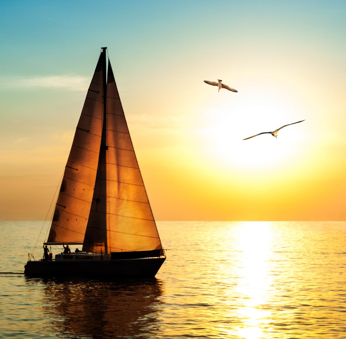 Sailboat at sunset with seagulls